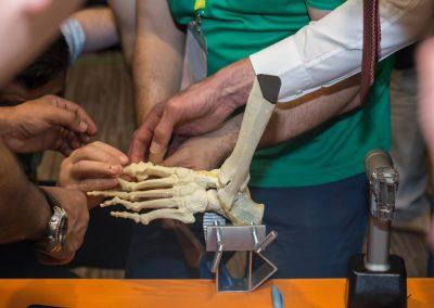 0129 resize facebook Chirurgia gleznei si piciorului_Palas 14.06.2018